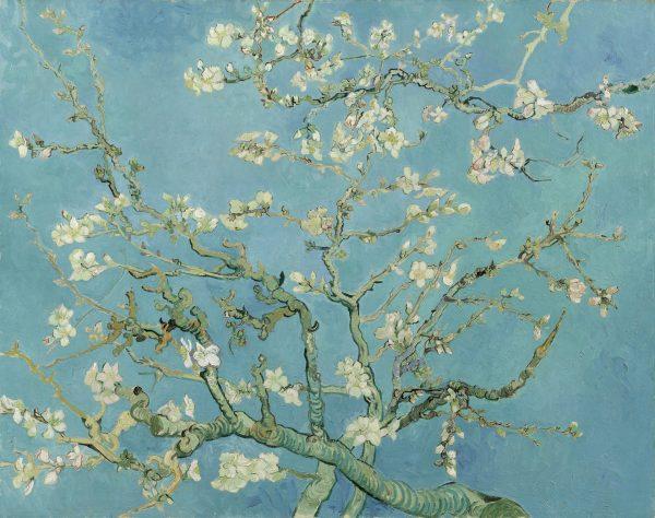 Almond Blossom, Vincent van Gogh, 1890
